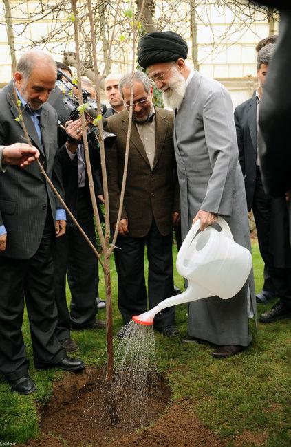 کاشت نهال همزمان با هفته منابع طبیعی توسط مقام معظم رهبری